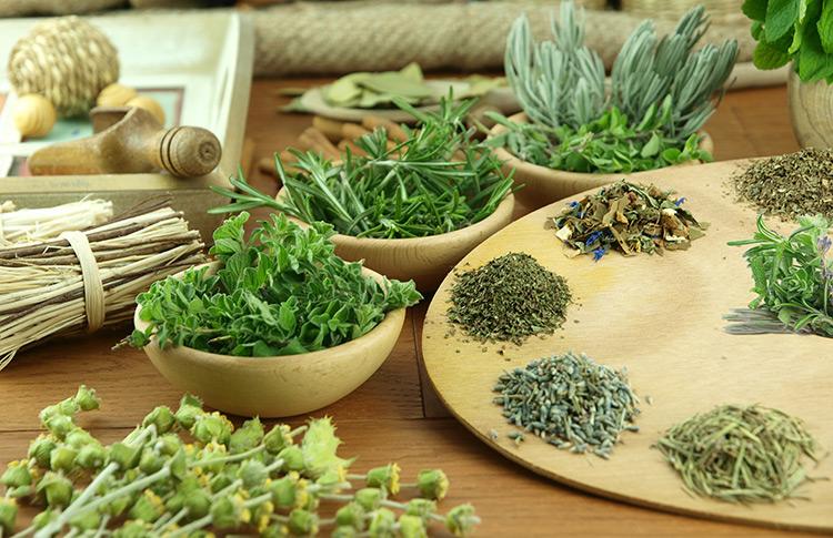 травяная диета для похудения