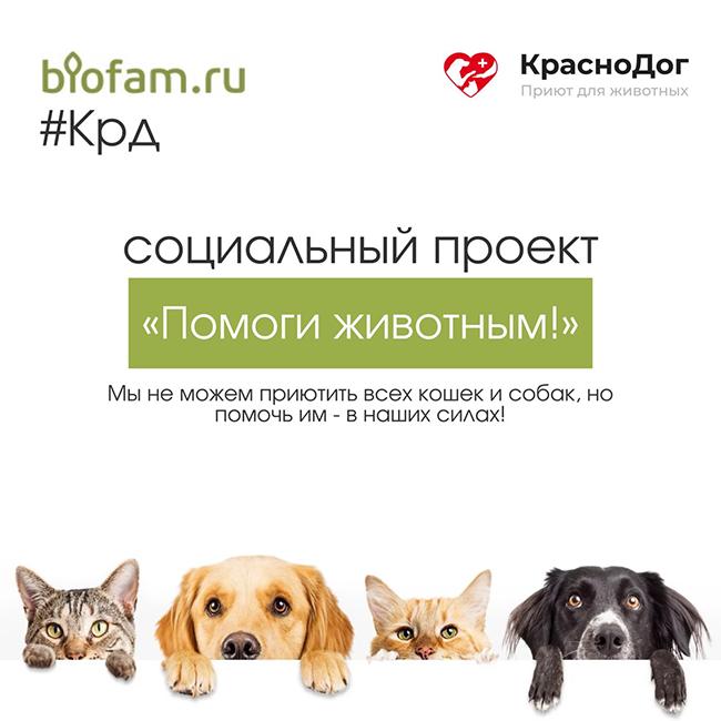 Помоги животным! Изображение 1