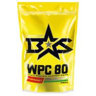 Протеин сывороточный WPC 80 Whey Protein Капучино Binasport фото