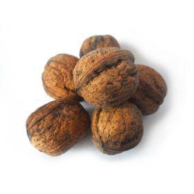 Грецкий орех в скорлупе фото
