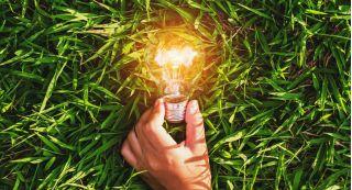 Травы-энергетики