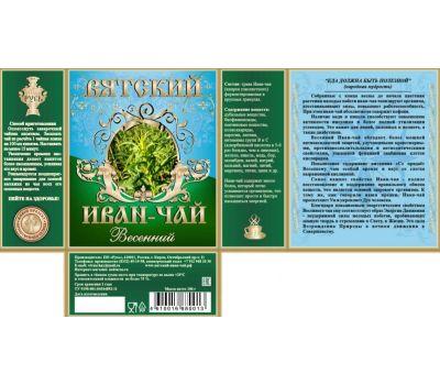 Иван-чай Весенний Вятский фото 2
